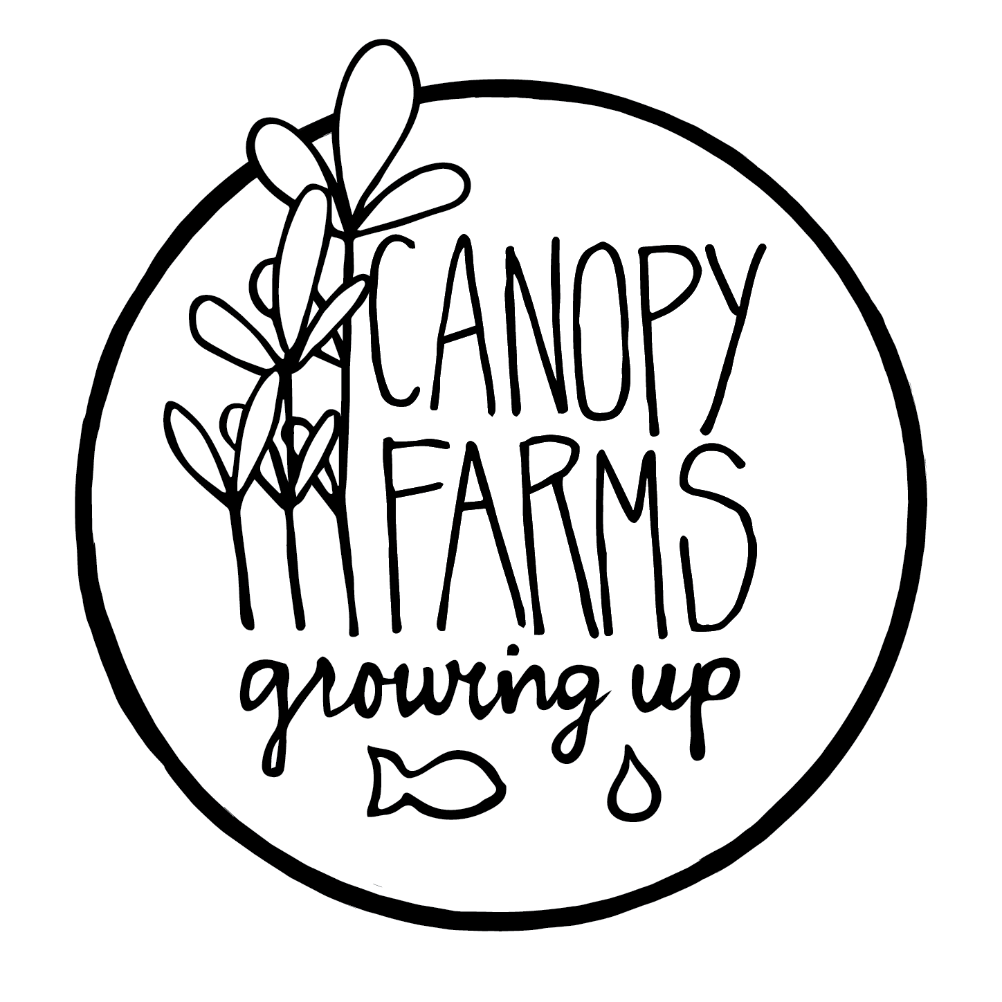 Canopy Farms